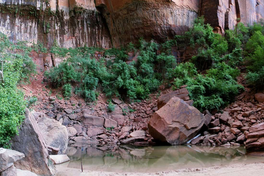 Can You Swim In Zion National Park